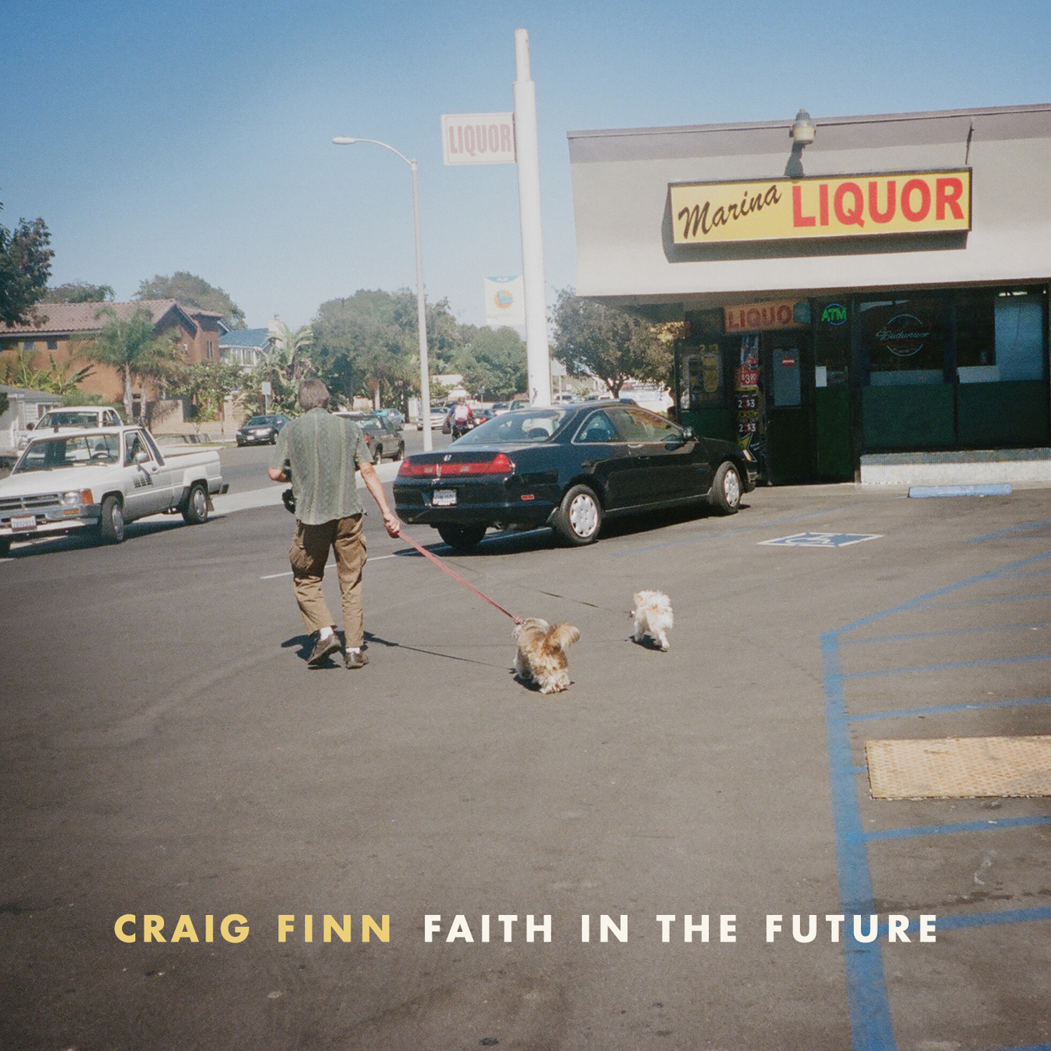 Newmyer's Roof (Free Single Download) - Craig Finn