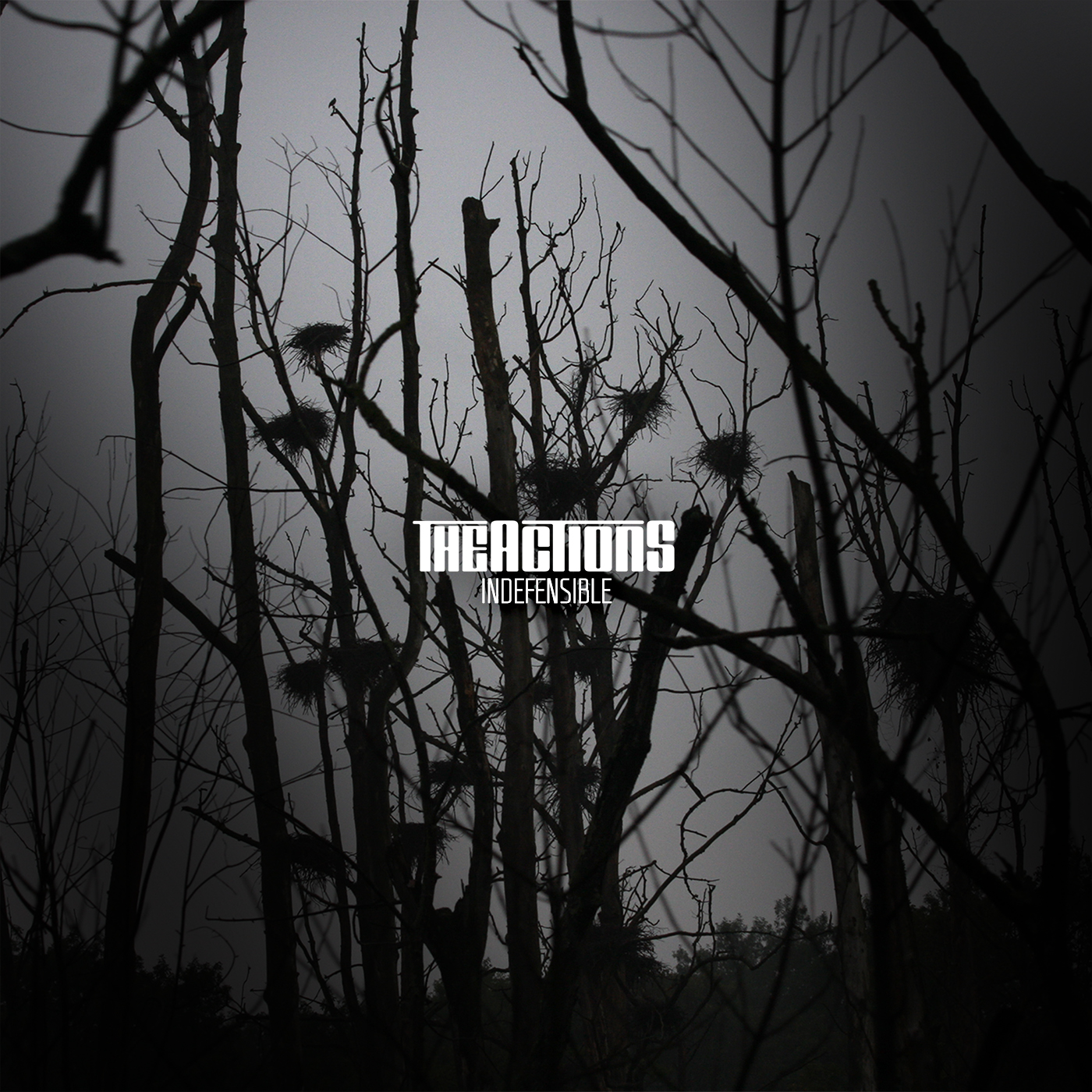 INDEFENSIBLE - The Actions