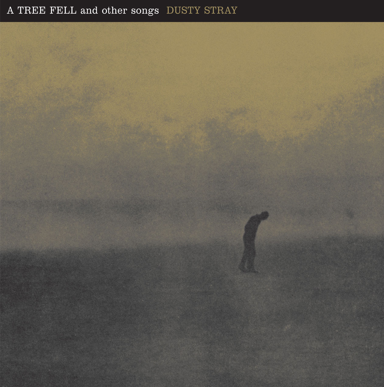 A Tree Fell And Other Songs cd - Dusty Stray